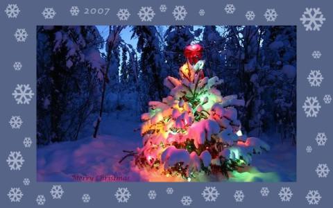 Frohe Weihnachten wünscht der Gutshof Wolfshain