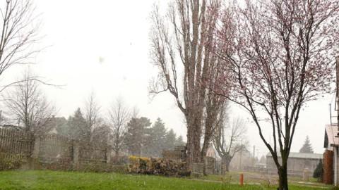 Schneetreiben auf dem Reiterhof