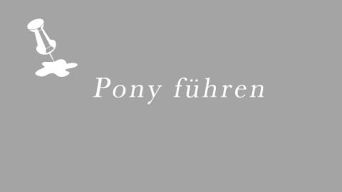Pony führen auf dem Leipziger Trödelmarkt