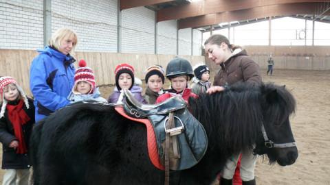 Kindergarten Gruppe auf dem Reiterhof