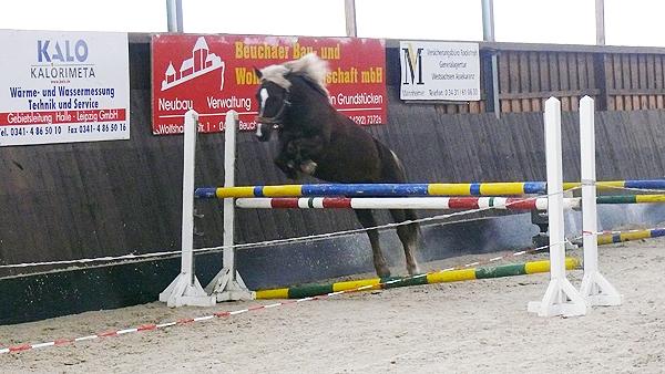 20100211-Freispringen-001