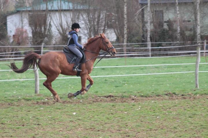 20100401-pony-004