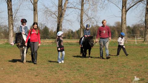Pony reiten am Geburtstag