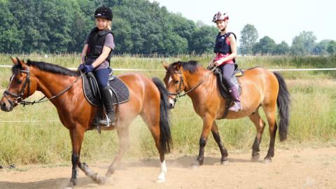 Reiterferien Kinder beim Voltigieren in der Reithalle