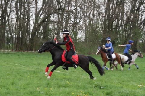 Reitsport – Mounted Games Turnier in Panitzsch