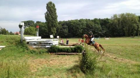 Riesenüberraschung bei den Vielseitigkeits-Landesmeisterschaften in Stahmeln