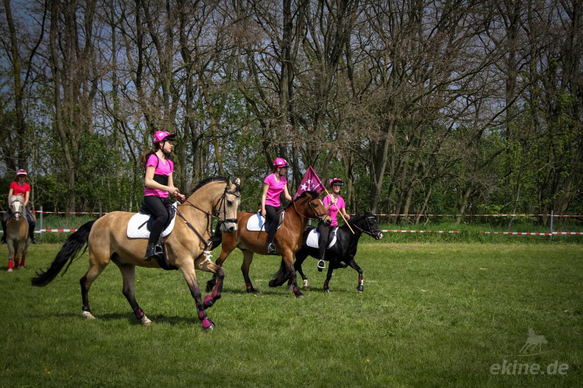 Mounted Games Leipzig